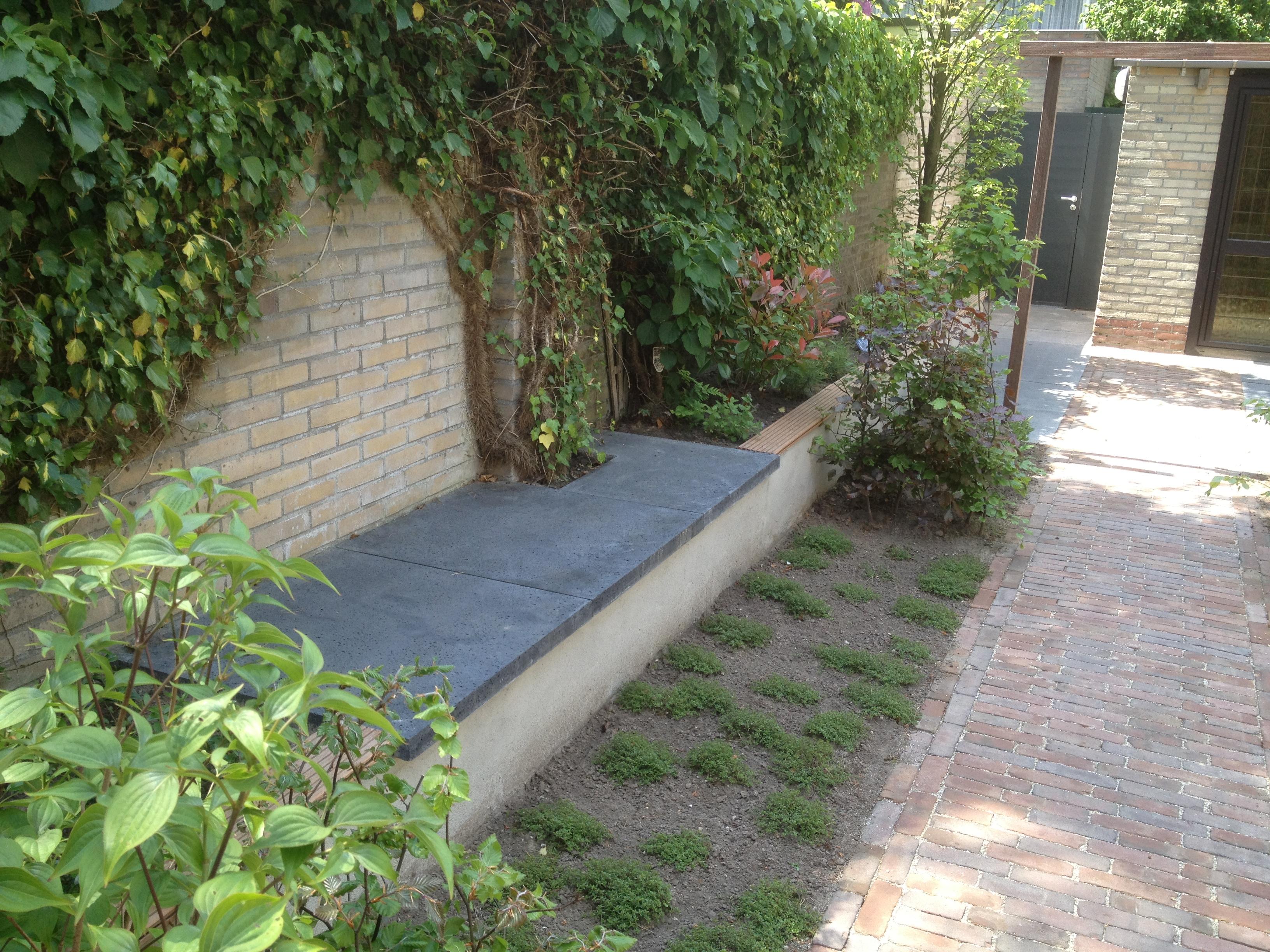 Tuinontwerp stiptop tuinen for Kleine tuinontwerpen